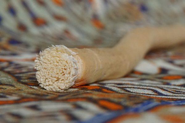 swak koreň na čistenie zubov