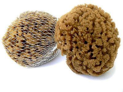 prírodna morská huba mineral